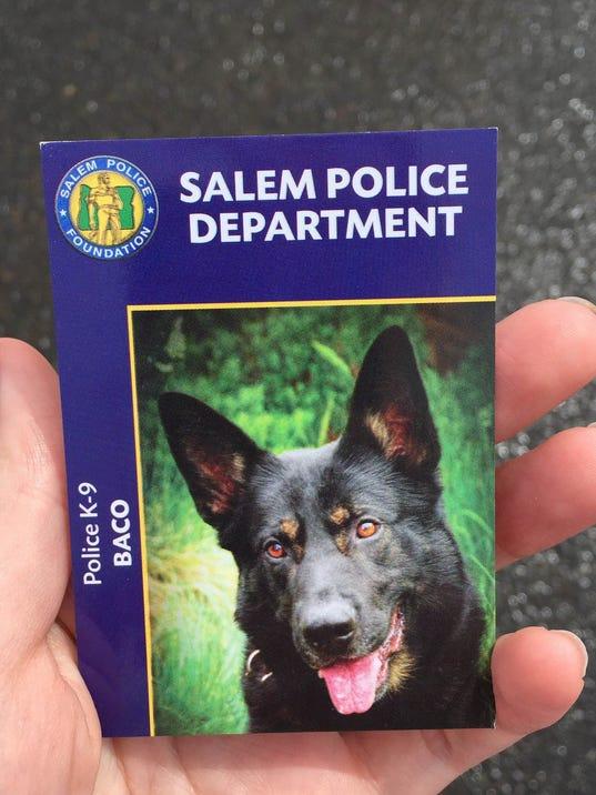 _media_2015_04_24_Salem_Salem_635654936356371410-dog (3).jpg