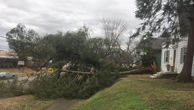 High winds took down a tall pine tree on the 800 block of Center St. in Henderson, Tuesday. The National Weather Service service had predicted sustained winds in the 25-30 mph range with gusts that could top 40 mph.