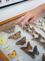 President Pam Murfey talks about some of the local butterflies that are on display at the Panhandle Butterfly House in Navarre on Friday, March 16, 2018.