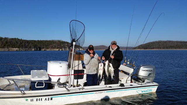 Success can still be had on Norfork Lake, but fishing will be limited until warmer weather comes to the area.