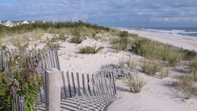 A large sand dune at the Midway Beach section of Berkeley Township, N.J. Homeowners there are fighting a plan by New Jersey and the US Army Corps of Engineers to take part of the land for a protective sand dune project.