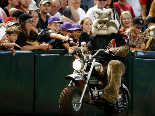 Arizona Diamondbacks mascot, Baxter, rides on the field
