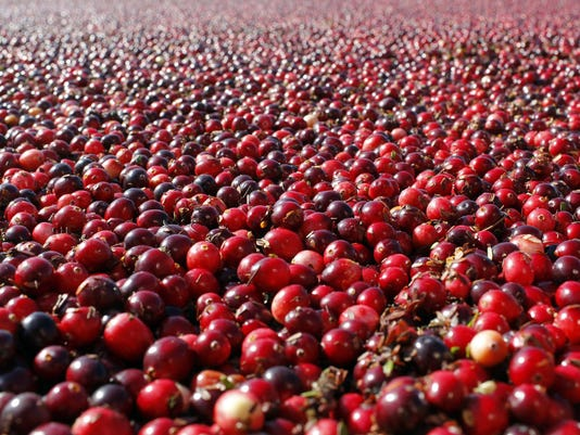 DFP cranberry myth (2)