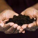 Soil heath workshops offered in November