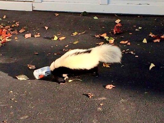 Skunk Stuck Beer Can