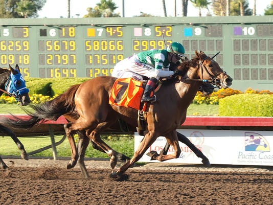 In a photo provided by Benoit Photo, Accelerate and jockey Tyler Baze, outside, overpower Semper Fortis, inside, with Santiago Gonzalez, to win the Grade II, $200,000 Los Alamitos Derby horse race, Saturday, Sept. 24, 2016, at Los Alamitos Race Course in Cypress, Calif. (Benoit Photo via AP)