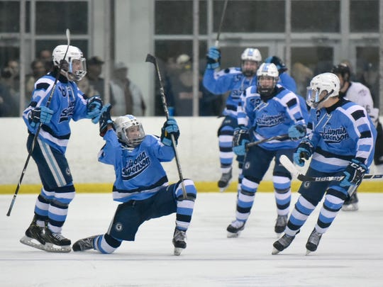 Livonia Stevenson celebrates one of three goals scored Tuesday against Plymouth. The Spartans won the hard-fought Division 2 pre-regional, 3-2.