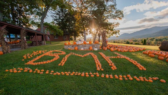 Black Mountain Home for Children will hold its annual Fall Festival from 10 a.m. to 3 p.m. Saturday, Oct. 14. Highlights include free games and inflatables for the kids, a silent auction with 150-plus items, live music, barbecue by Butts on the Creek, wagon rides, a car and Jeep show, Ridin' on Faith Ministries, and more. Funds raised go to support the ministry's Every Day Fund, which meets the daily needs of children in care. Visit BlackMountainHome.org or call 828-686-3451 to learn more.