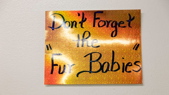 'Don't Forget the Fur Babies,' sign at the Acadian Superette near downtown Lafayette.