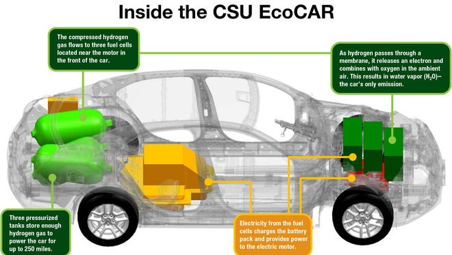 Image provided by CSU