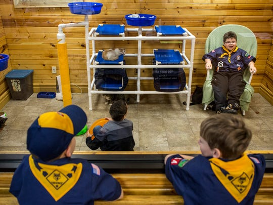 Indian Woods Cub Scout Pack 154 members watch through a window as Bradyn Hinton, 7, and Dylan Collins, 8, play with cats in the cat adoption room Tuesday, March 1, 2016 at St. Clair County Animal Control.