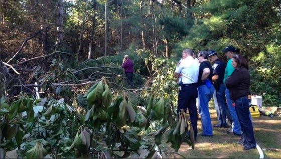 Emergency crews responded to the sene of a small airplane crash near the Monroe County Airport.