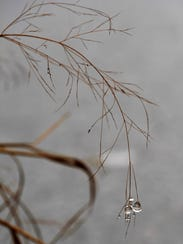 Drops of ice hang over the bank of the lake at Cal Young Park Tuesday. Most of the lake's surface was frozen.