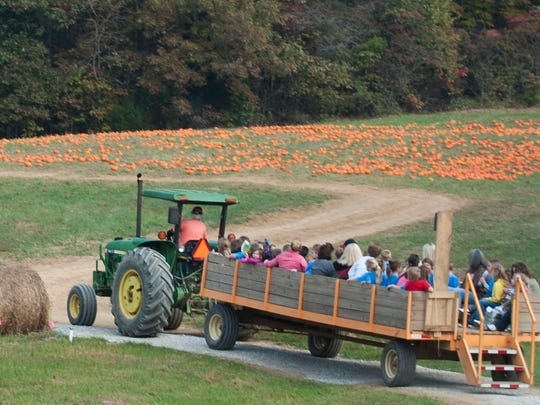 First-graders and their teachers and chaperones from Washburn School ride a hay wagon to the Oakes Farm pumpkin patch and corn maze.