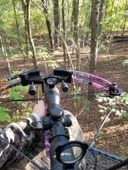 The crossbow used by Virginia Murphy to fall a large buck deer.