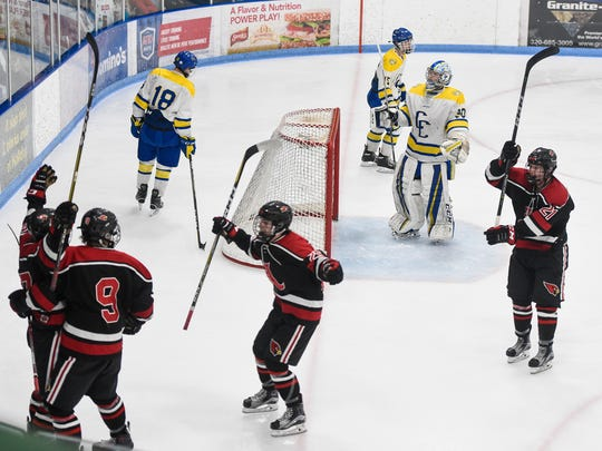 Alexandria players celebrate a goal during the second period of the Section 6A hockey finals at the MAC in St. Cloud.