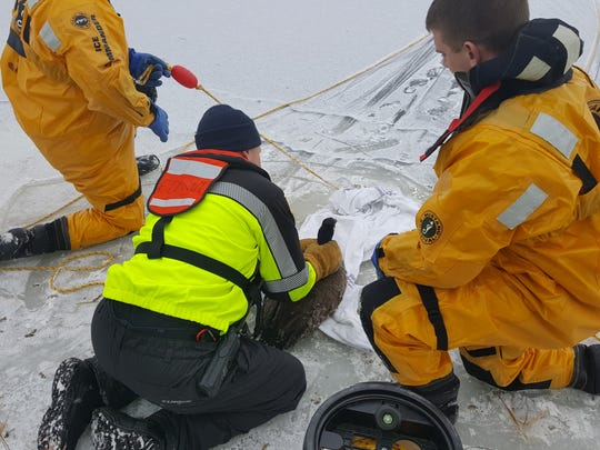 Fond du Lac firefighters ready a Canada goose for release