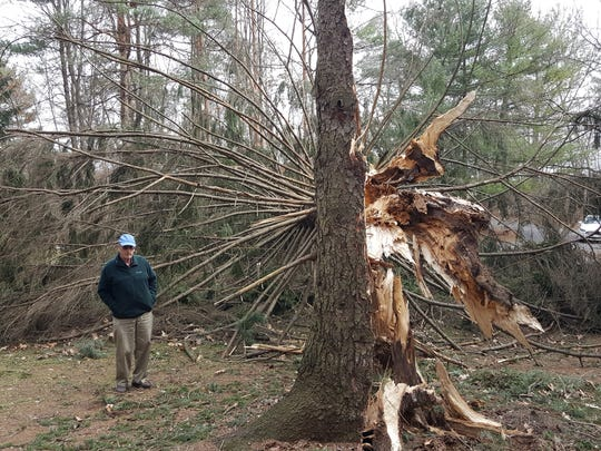 "George Hicks said he heard a ""snap"" and watched as a 180-foot pine tree fell next to his home on Griffith Road in Genoa Township in March. Some 35,000 county residents lost power during the storm."