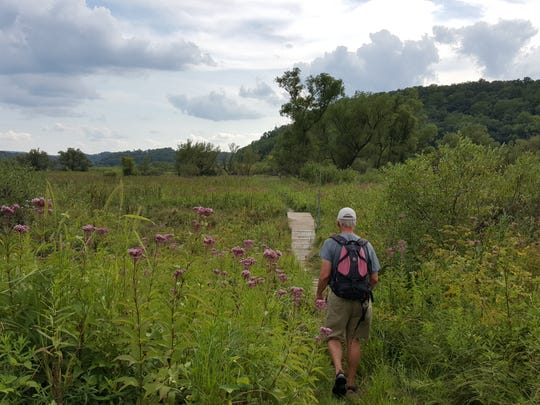 A hiker walks along a boardwalk through wetlands at the Pleasant Valley Conservancy in Black Earth.