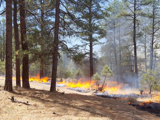 636590608336648190-0412prescribedburn.jpg