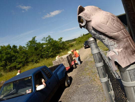 A decoy owl that was salvaged during bulky drop-off