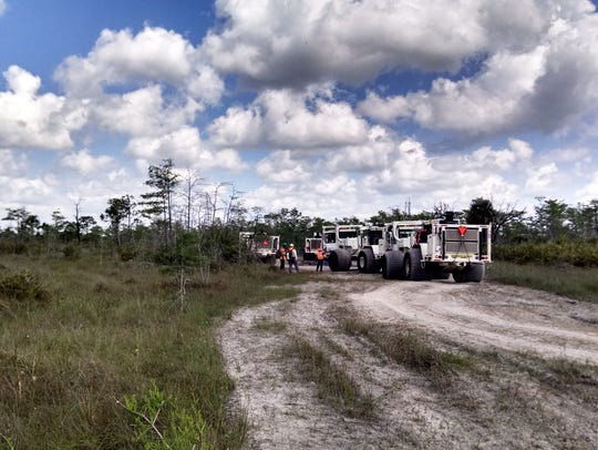 Survey crews and heavy trucks head into the Big Cypress