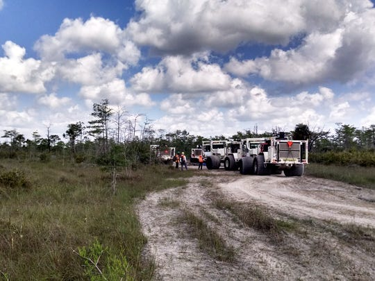 Survey crews and heavy trucks head into the Big Cypress