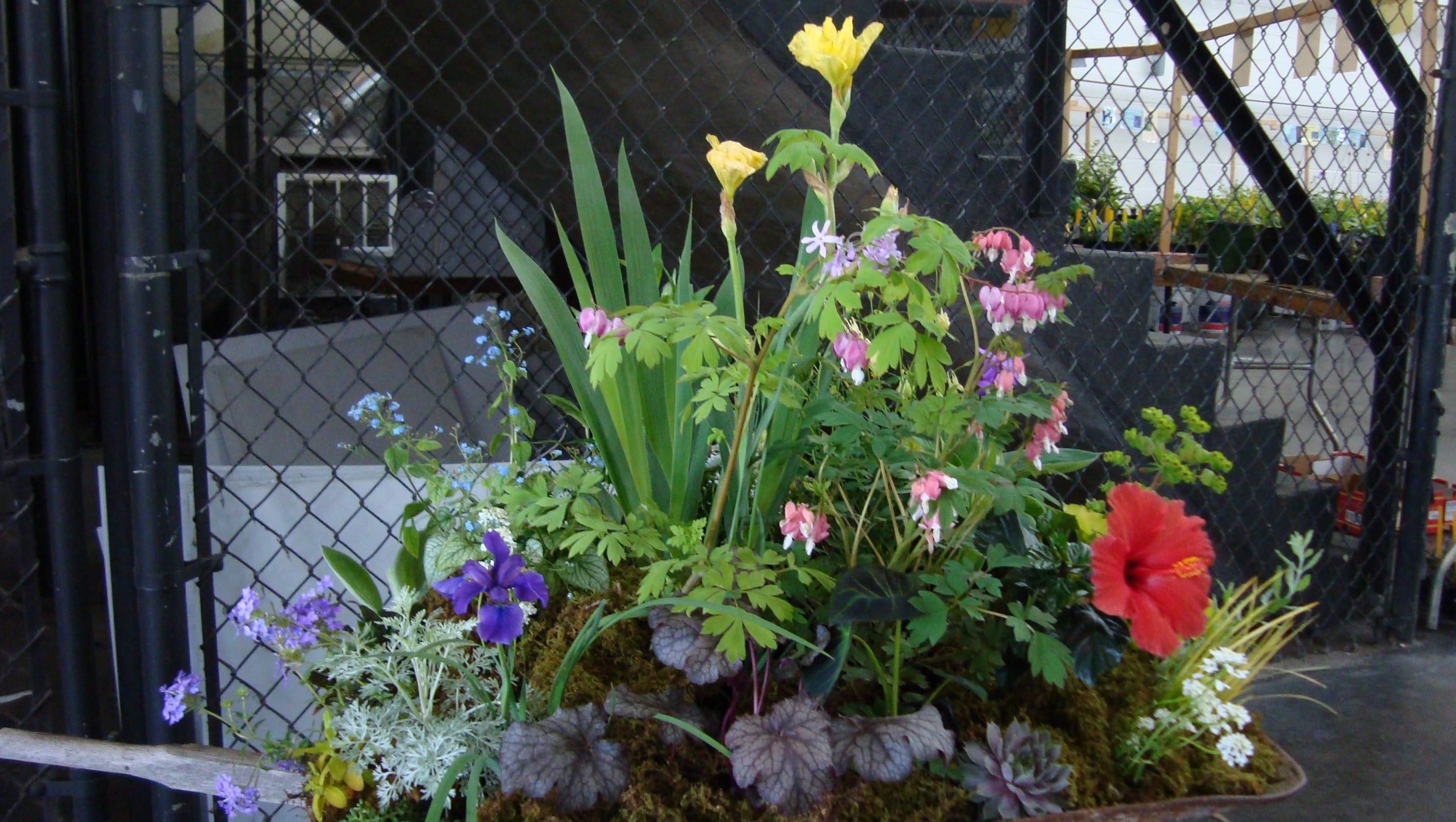 April Calendar Nashville : Mark your calendar for april plant sales in nashville