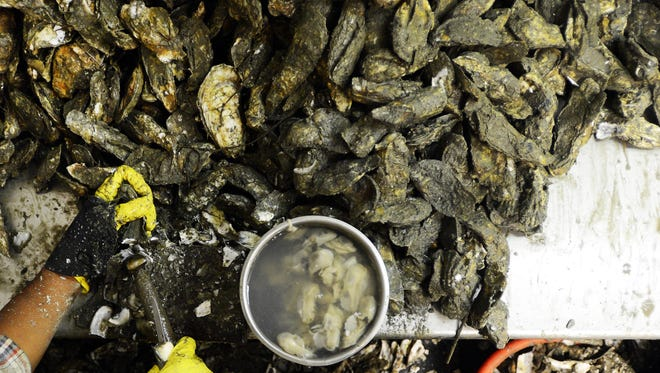 Oyster and Wine Lovers' Weekend will be celebrated Nov. 13-14 in Cape Charles.