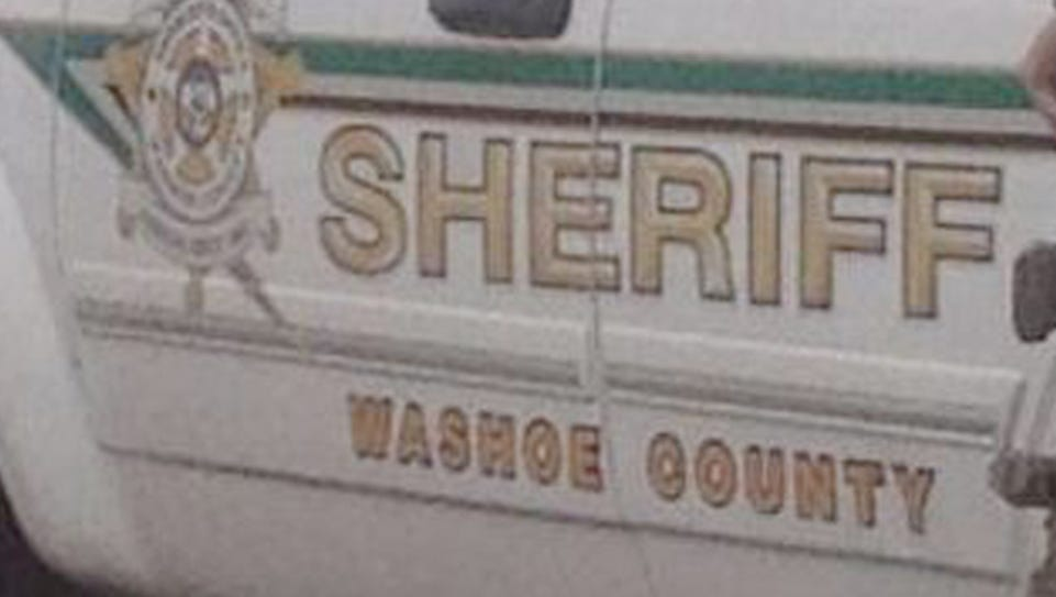 Washoe County Sheriff's deputies arrested a burglary