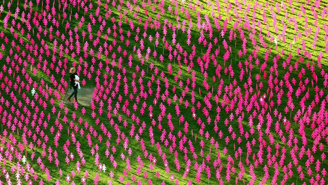 "A woman and her young child walk through a ""mini-field of women"" planted in support of the Breast Cancer Network Of Australia on May 15, 2016 in n Melbourne. The field consisted of pink lady silhouettes representing the women diagnosed with breast cancer this year."