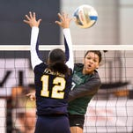 Novi volleyball steamrolls DeWitt to reach fourth straight Class A final