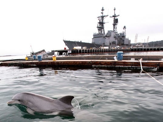 AP_Navy_Dolphins