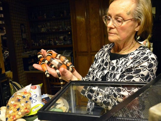 "June Wideman onced described the features on ""Possum,"" a female milk snake. ""Possum"" was one of 11 non-venomous snakes the Widemans had in their home in March 2016."