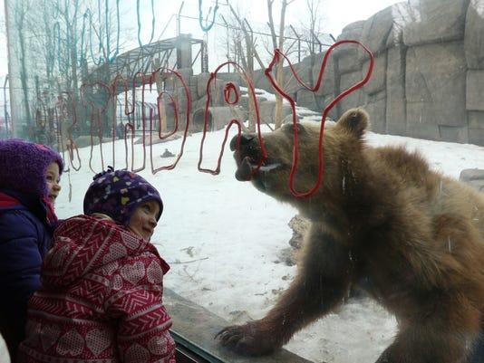 635916608970201991-mnh-20160221-bears-birthday-06.jpg