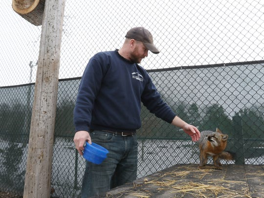 Steve Burns, zookeeper at the Wildwood Zoo, bonds with