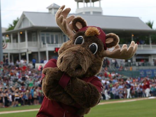 Frisco Roughriders rookie mascot Bull Moose has his