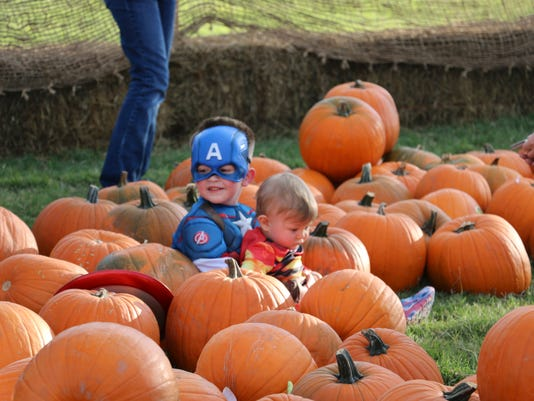 636128299945723841-haunted-pumpkin-patch-1.jpg