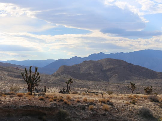 Wildlife managers and volunteers are working to improve the habitat for the federally-protected Mojave Desert Tortoise in the Beaver Dam Wash National Conservation Area.