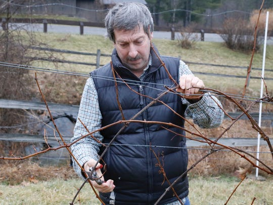 Paul King, a winemaker at Six Mile Creek Vineyard,