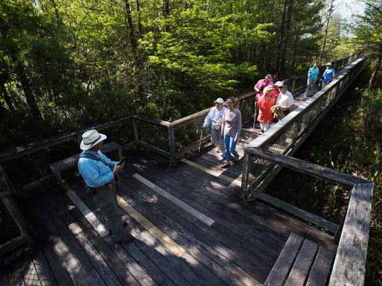 George Luther, a volunteer at CREW Land and Water Trust Bird Rookery Swamp leads a group of the visually impaired along with employees of the Lighthouse and volunteers on a tour of the swamp.