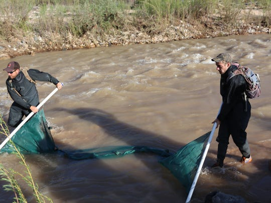 Erik Woodhouse, left, a native aquatics biologist with the Utah Division of Wildlife Resources, and Joe Zany, a DWR fisheries technician, work to survey some of the Virgin River's fish species at a site north of Hurricane on Tuesday, March 28, 2017.