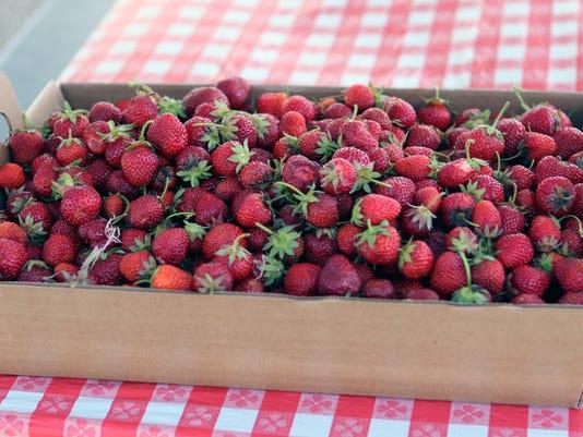 WSF 0630 Strawberry season 6