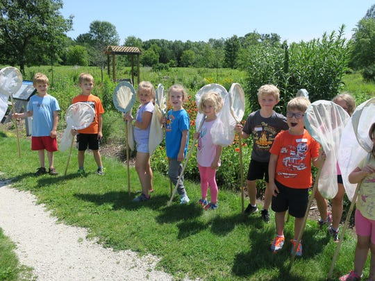 Eco Buds getting ready to catch bugs in the prairie at Maywood.