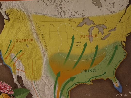 A map of the migration route butterflies take.