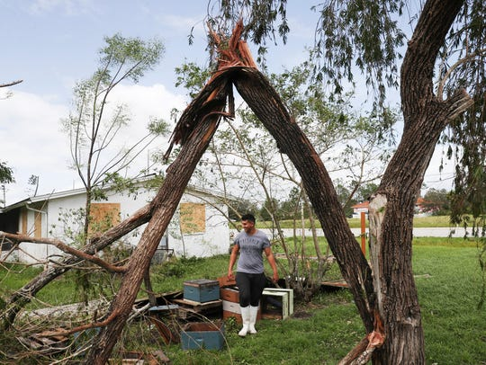 A Lehigh Acres resident cleans up his yard Monday 9/11/2017