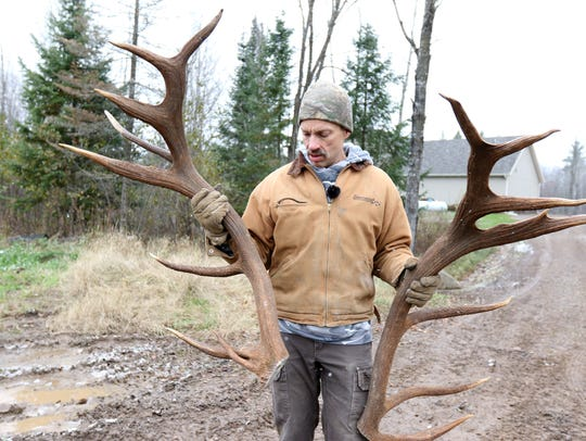 Rick Ewert holds up a pair of elk antlers at Hemlock
