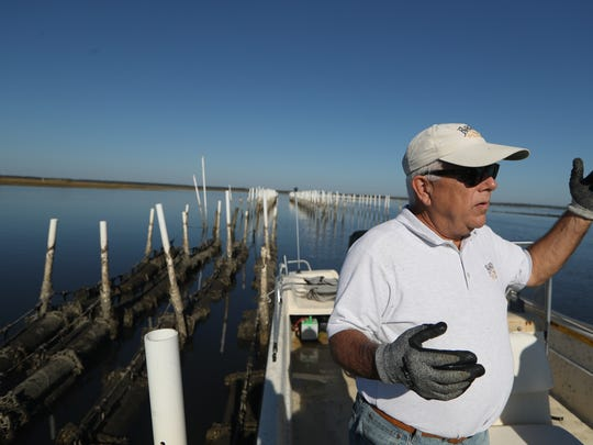 Rob Olin, oyster rancher and CEO of the Panacea Co-Op