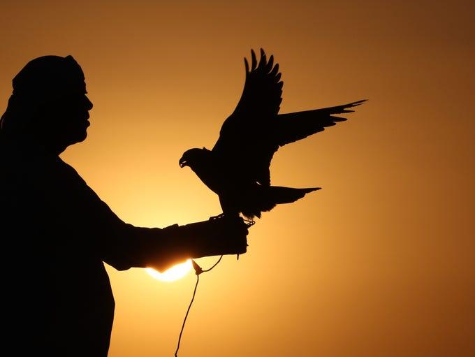 A falcon enthusiast trains a falcon during the 4th