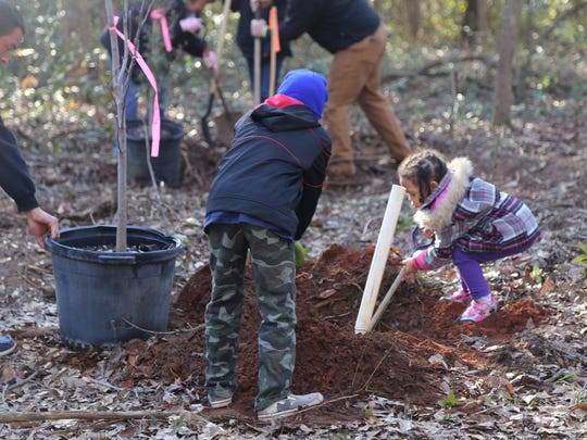 Rain or shine, bring along shovels, gloves, drinking water, and your whole family to help plant trees on Jan. 26.